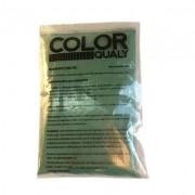 Pigmento Verde de 500 g (Especificação FVD-5605)