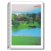 Caderno Espiral 1/4 CF 96 Folhas PanAmericana 3