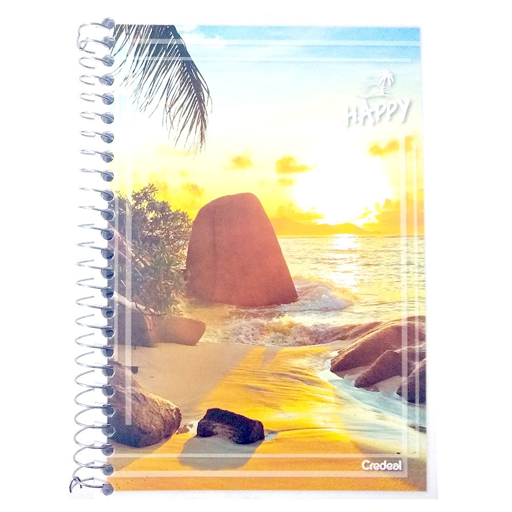 Caderno Espiral 1/4 CF 96 Folhas Happy 4 Credeal  - INK House