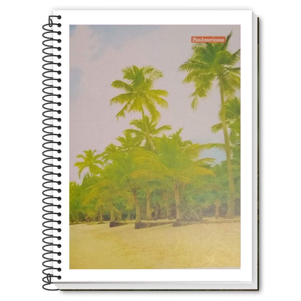 Caderno Espiral 1/4 CF 96 Folhas PanAmericana 4