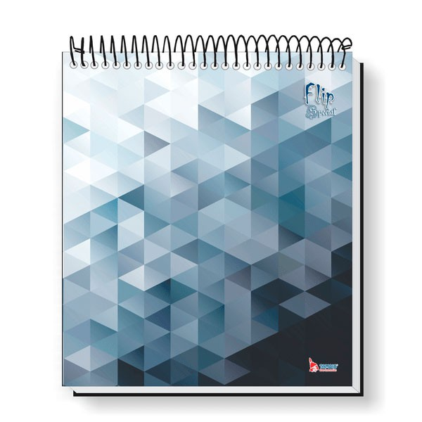 Caderno Universitário 10x1 CD 160 Folhas Flip Special 2 Tamoio  - INK House