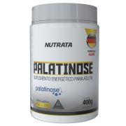 PALATINOSE 400G - NUTRATA