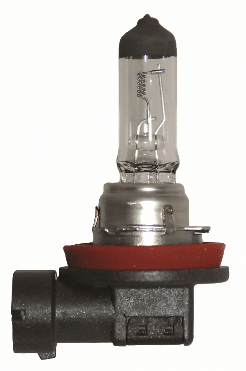 LAMPADA H11 24V 55W