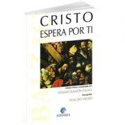 Livro - Cristo Espera por Ti | Waldo Vieira