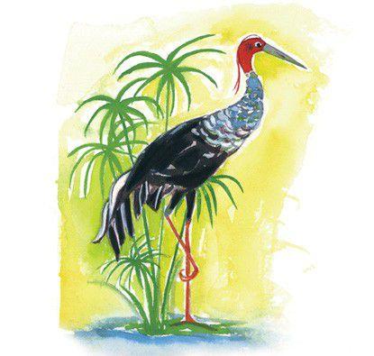 A Árvore que Canta, o Pássaro que Fala e a Fonte que Rejuvenesce  - Grupo Brinque-Book