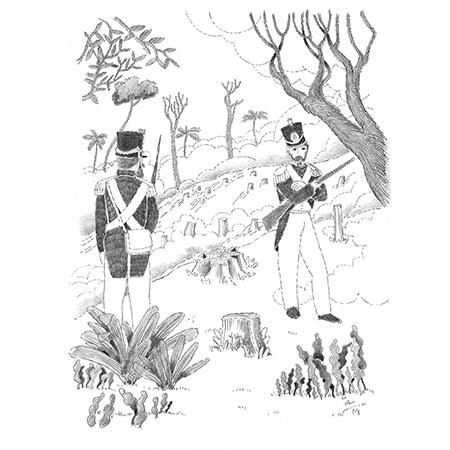 Ludi na Floresta da Tijuca  - Grupo Brinque-Book