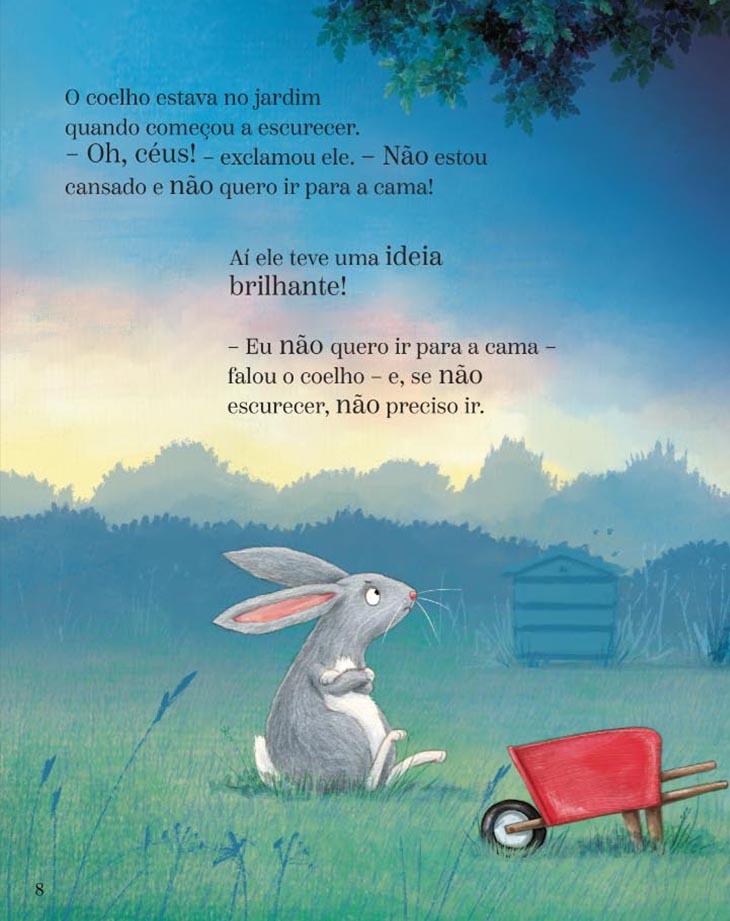O coelho, o escuro e a lata de biscoitos  - Brinque-Book