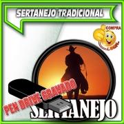 PENDRIVE GRAVADO MUSICAS SERTANEJO TRADICIONAL