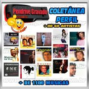 PENDRIVE GRAVADO MUSICAS PERFIL VARIOS ARTISTAS NACIONAIS