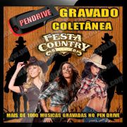 PENDRIVE 16 GIGAS GRAVADO MUSICAS COLETÂNEA MUSICA COUNTRY