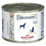 Alimento Úmido Recovery Para Cães E Gatos Royal Canin