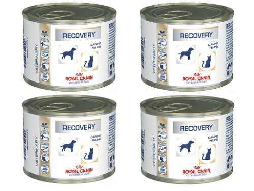 Alimento Úmido Recovery Para Cães E Gato Royal Canin 4 Latas