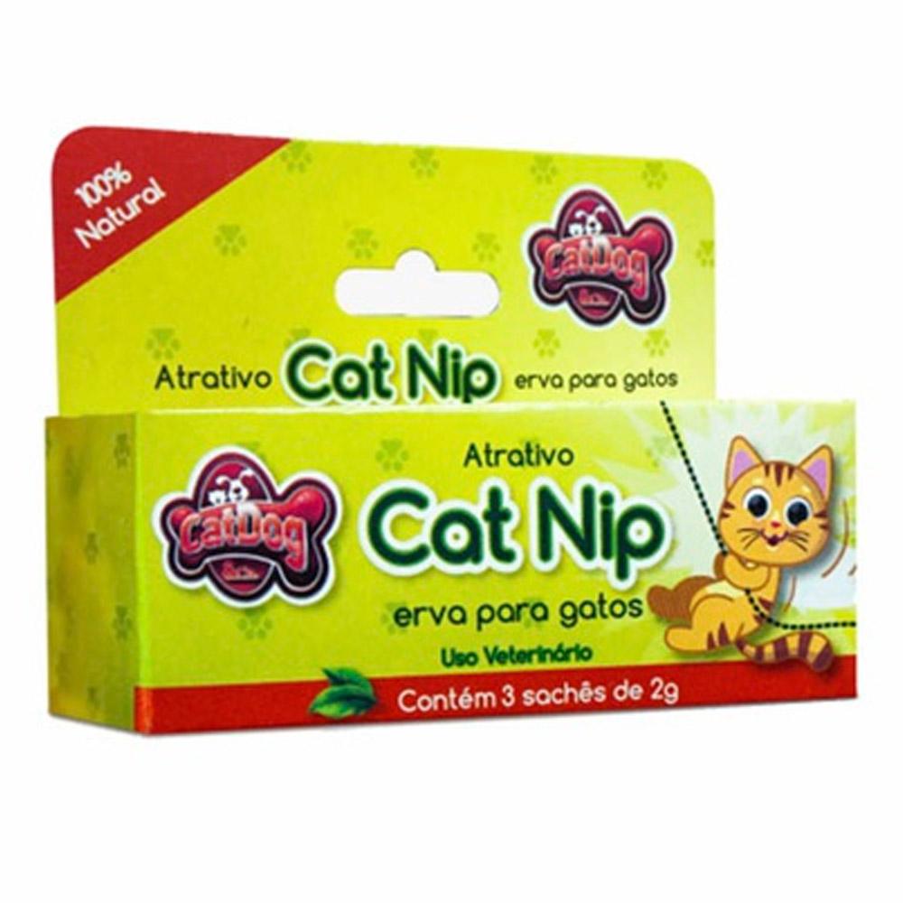 Atrativo Cat Nip Erva para Gatos 100% natural - Caixinha com 3 sachês de 2g cada