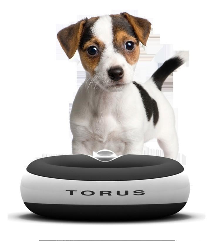 Bebedouro Torus Automático para cães e gatos Vermelho 2 Litros