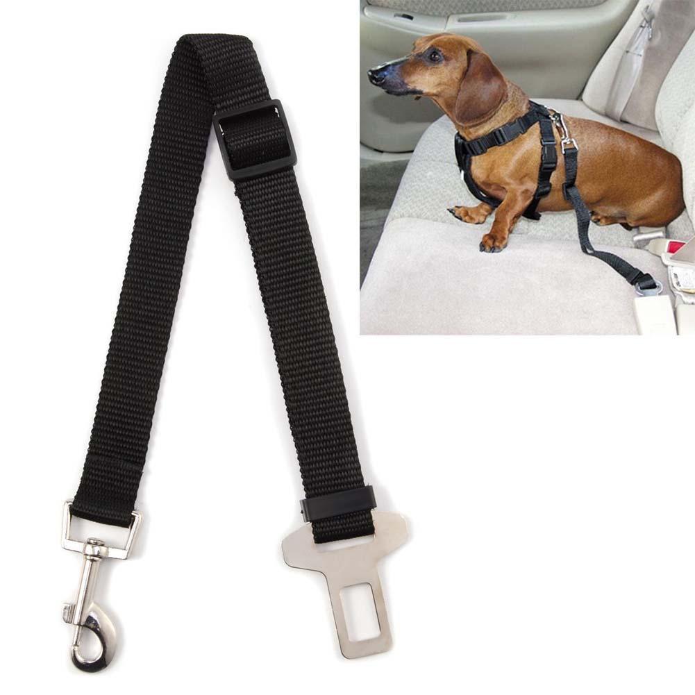 Cinto de Segurança para Cães Chalesco