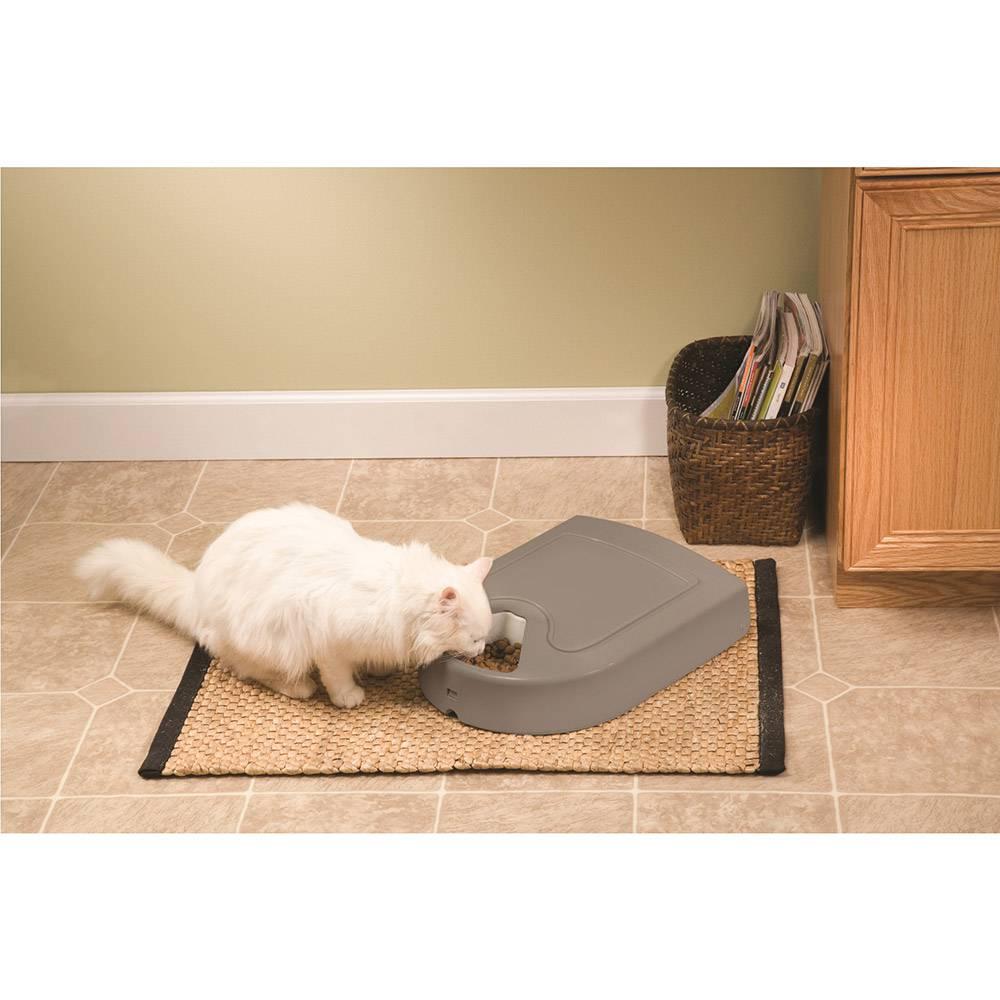 Comedouro Alimentador Eletrônico para cachorro e gato Eatwell Plus 5 Refeições Amicus