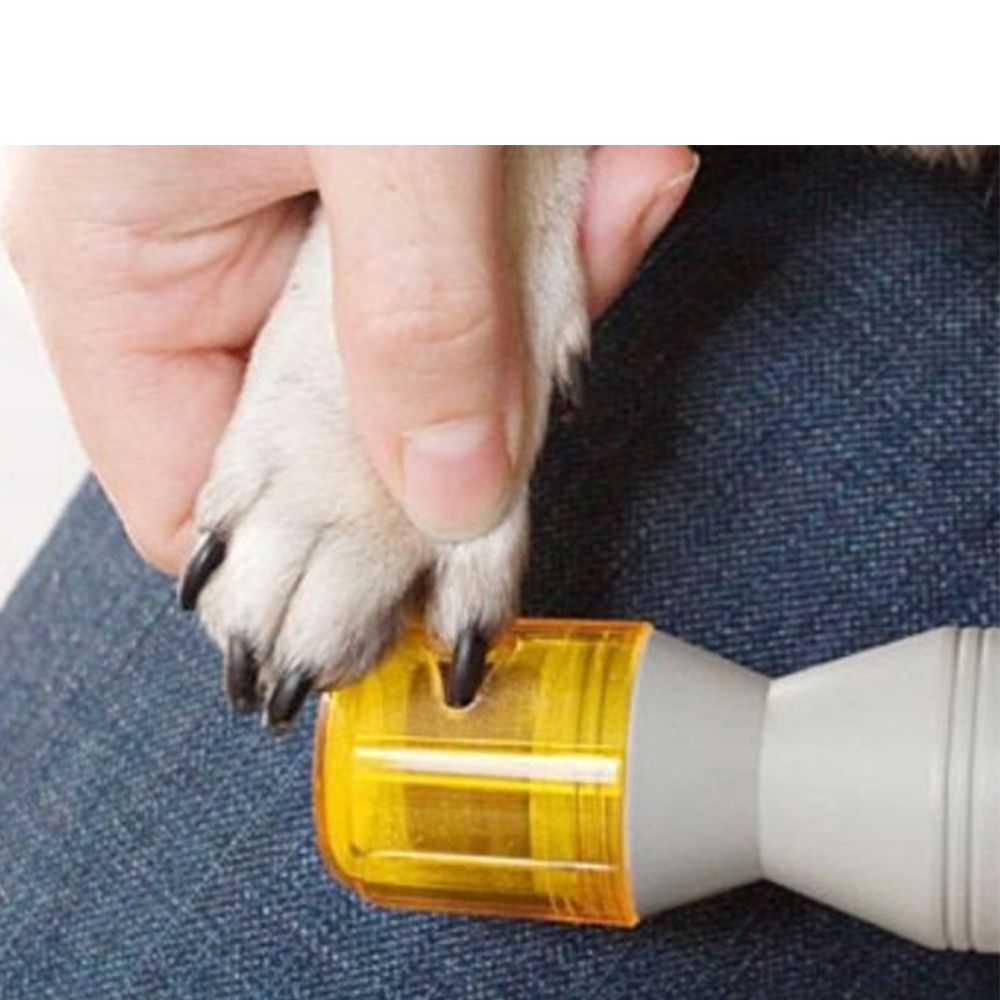 Lixa aparador de unhas para cães e Gatos Automática Elétrica Premium PediPaws Chalesco - Pilhas não inclusas