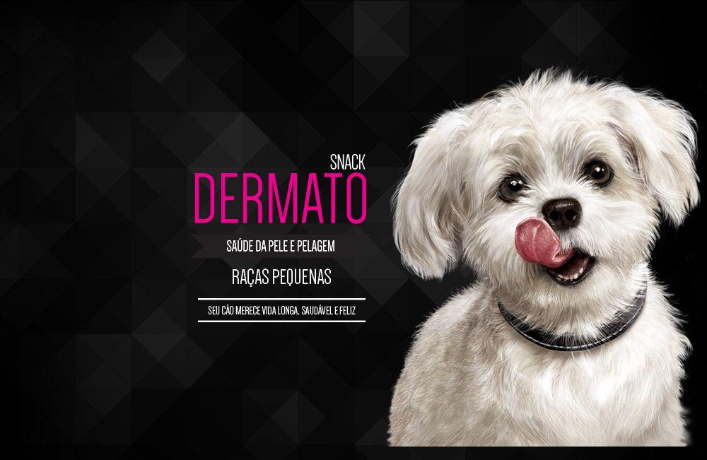 Petisco Para Cachorros Freeze Dried Dermato Equilíbrio