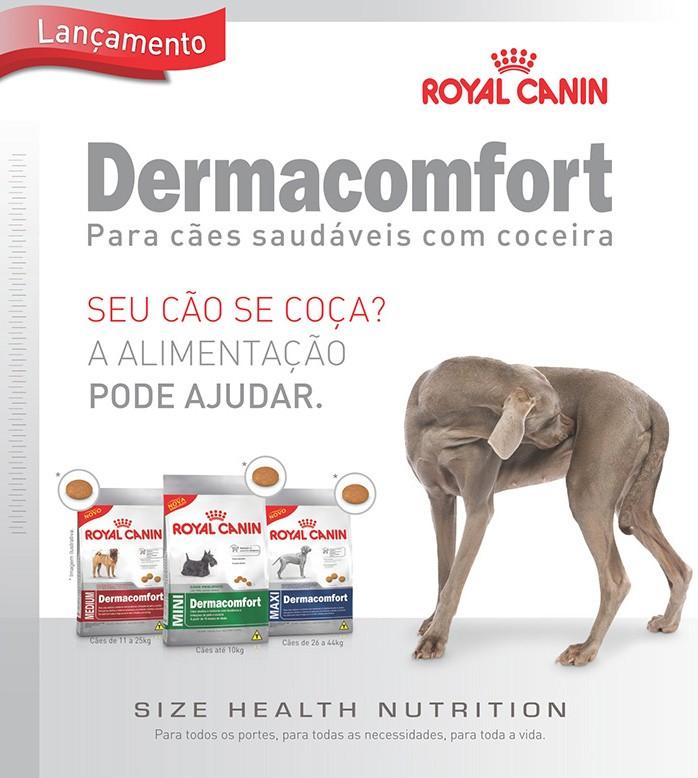 Ração Royal Canin Mini Dermacomfort  Cães Com Problema De Pele