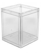 Caixa Organizadora - Isoflex