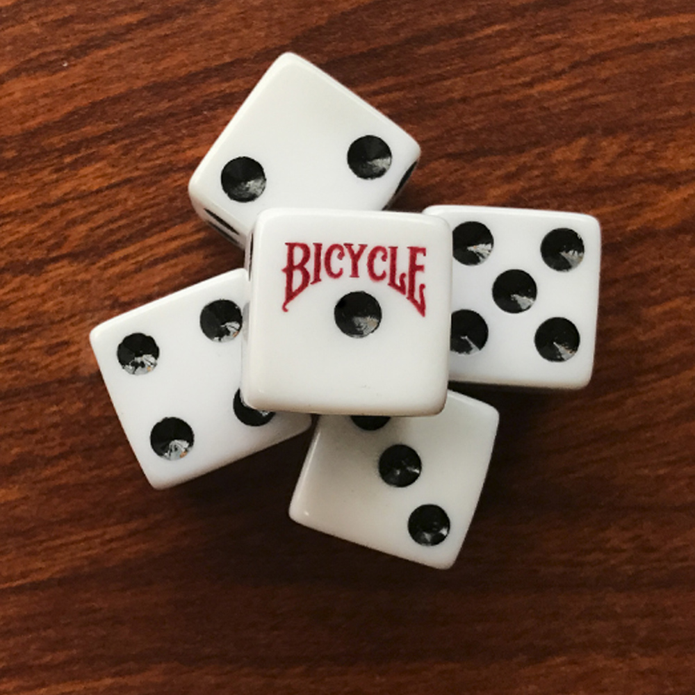 Cartela com 5 dados Bicycle 6 lados