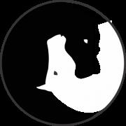 d847487893 Adesivo yin yang cavalo