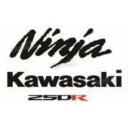 Kit Adesivos Kawasaki Ninja 250r 2008 Verde
