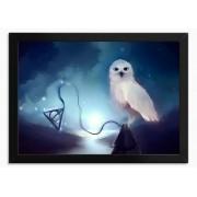 Quadro Edwiges - Harry Potter