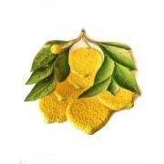 Petisqueira Limão