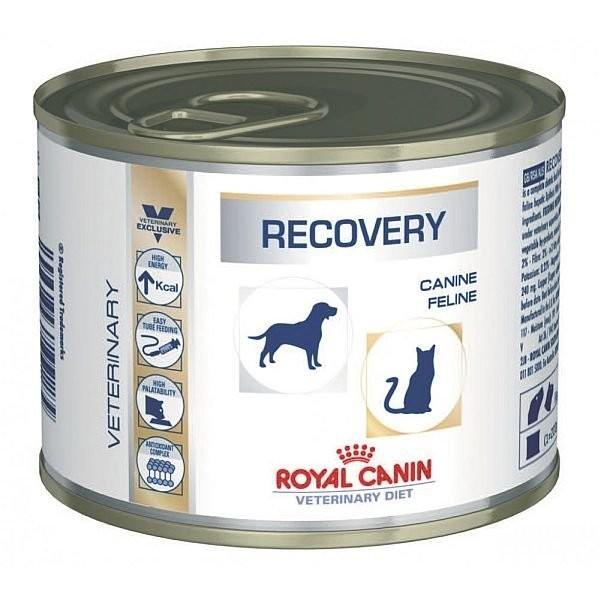 Canine e Feline Recovery Wet 195gr - Cães e Gatos