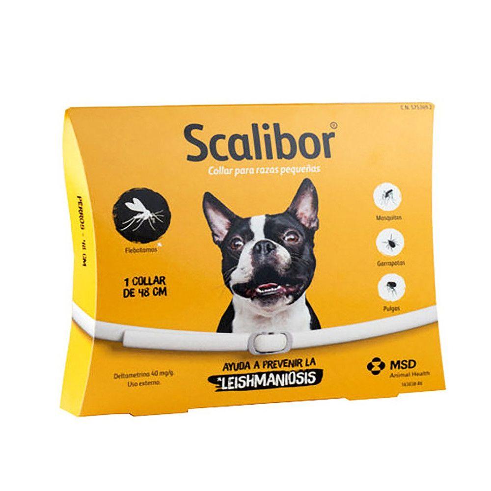 Coleira Scalibor Cão pequeno e médio