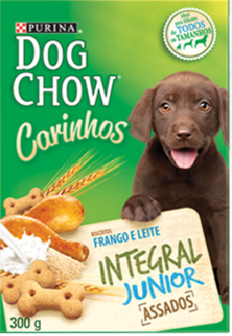 Petisco Dog chow Junior 300 gramas
