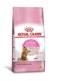 Ração Royal Canin Kitten Sterelised Gatos - Ração para gatos castrados 1,5kg Filhotes