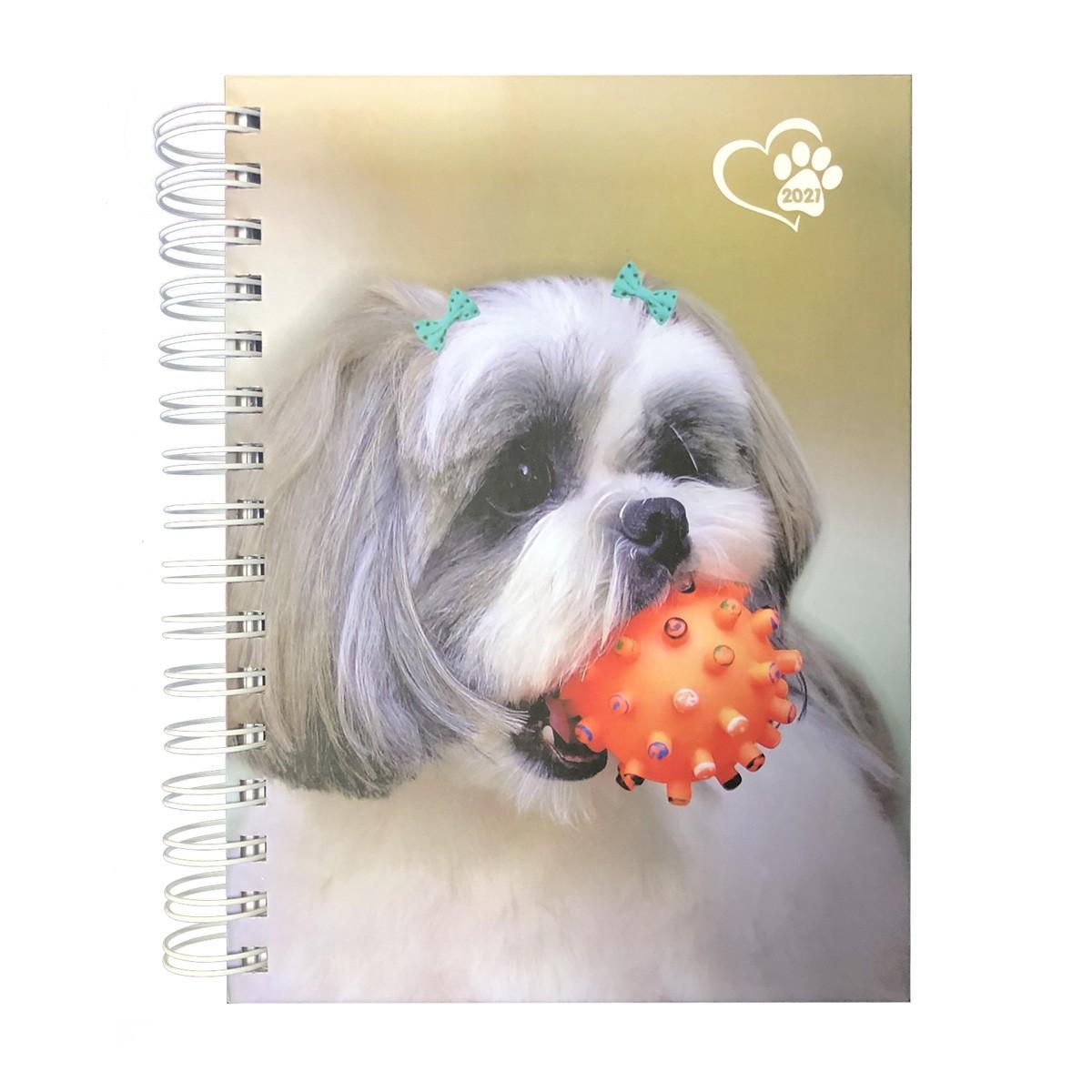 Agenda Pautada A5 168fls 2021 Dog  Cão doSul