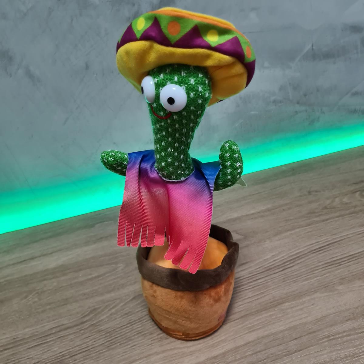 Cactos Animado Dançante e falante Cactus Dancing Poncho Repete o que fala