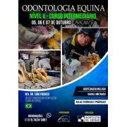 Curso Intermediário de Odontologia Equina ( Nivel 2)