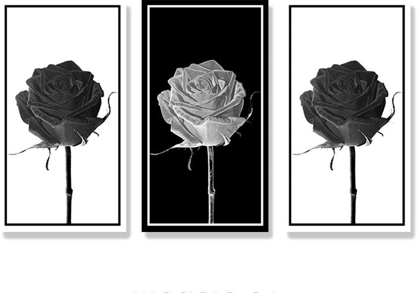 Adesivo Decorativo para Parede - Flores - Rosa Monocromática Ref. 01