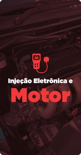 Injeção Eletrônica e Motor*