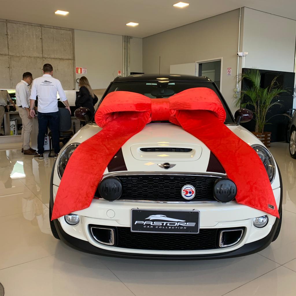 Laço Gigante com Lapelas de 1,5 metros Decorativo para Veículos  - Maki