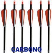 "Flecha Carbono Vixion 30"" V-Force  8mm / 32g (Kit 6 Pçs) Ponta Rosca"
