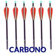 Flecha Carbono Vixion 30'' Super VX-100CP  2R1G Spine 350 - Tubo Fino 7mm / 24g (Kit 6 Pçs) Ponta Rosca