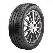 Pneu Goodyear Aro 16 195/55R16 Efficientgrip Performance 91V
