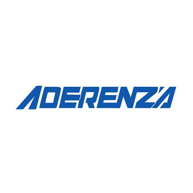 Kit 2 Pneus Aderenza Aro 15 195/55R15 Speedline E1 85V