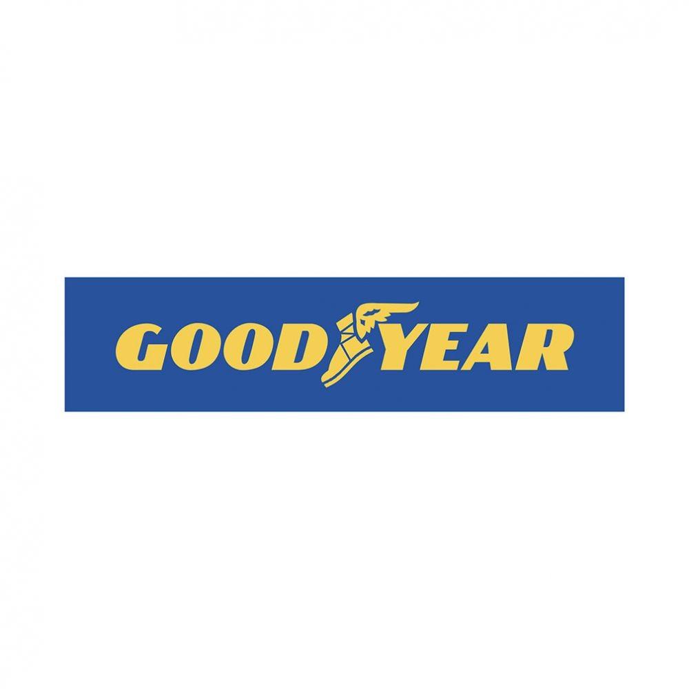 Kit 2 Pneus Goodyear Aro 17 225/50R17 Efficientgrip 94V Dot 2016