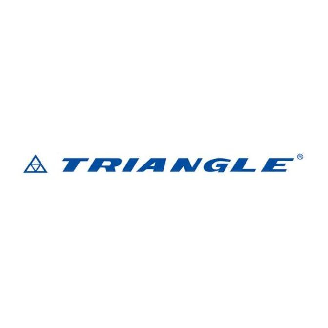 Kit 2 Pneus Triangle Aro 19 225/55R19 TR-259 99V