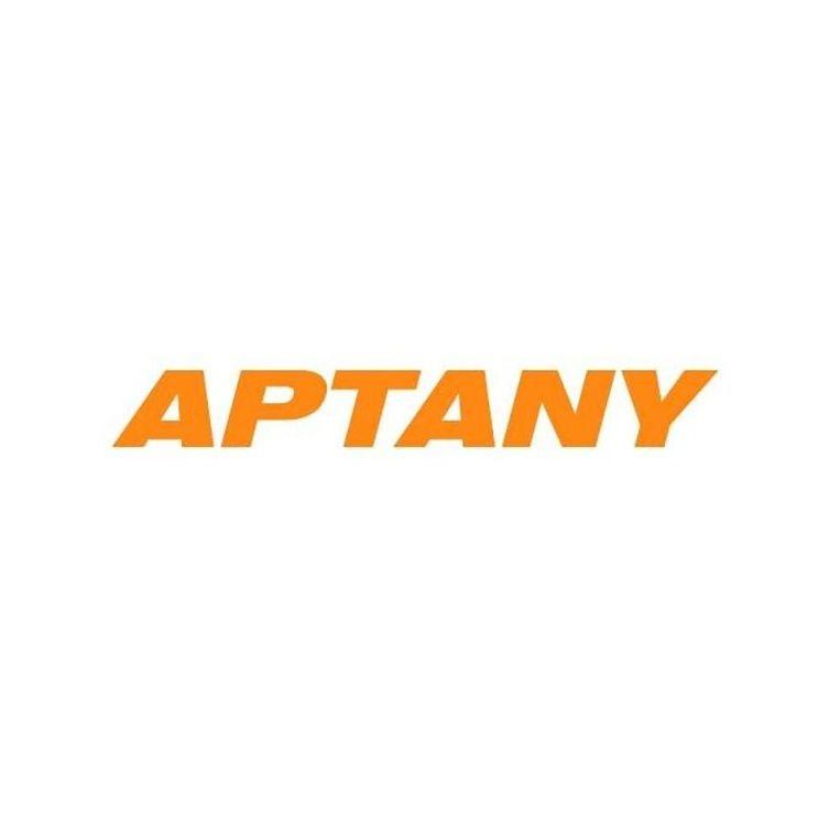 Kit 4 Pneus Aptany Aro 16 225/75R16 RL101 115/112S