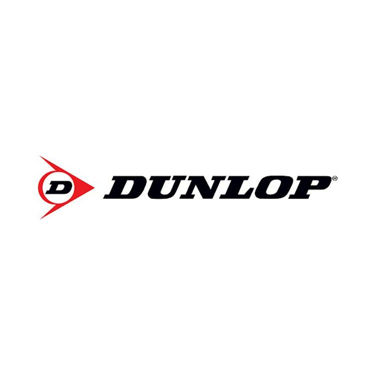 Kit 4 Pneus Dunlop Aro 15 195/55R15 SP Sport FM800 85V