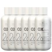 Caixa 6 uni. Ox Cream 20 Vol. 90 ml