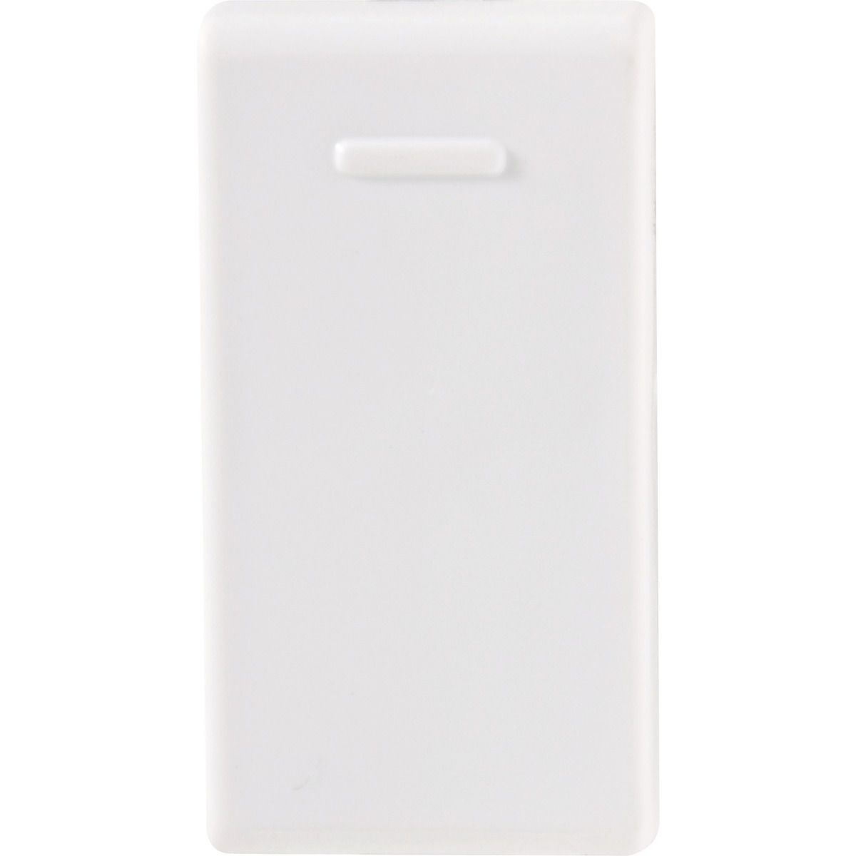Módulo interruptor simples 10A 250V - Branco