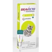 ANTIPULGAS MSD BRAVECTO GATO TRANSDERMAL 112,5MG(1,2-2,8KG)